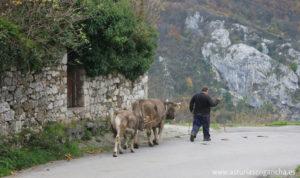 Asturias y sus gentes
