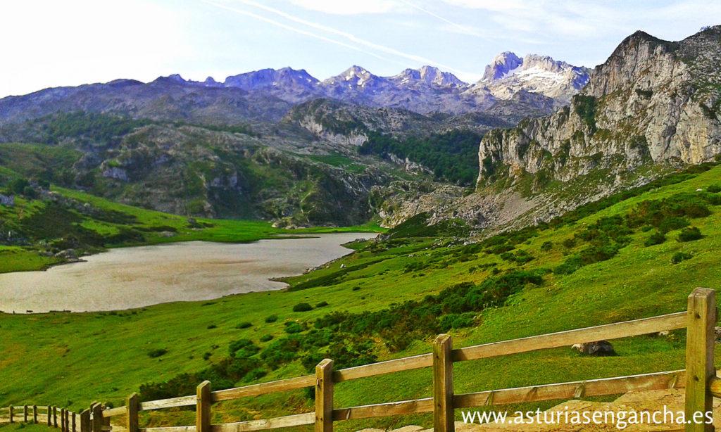 Transporte: Covadonga -Lagos 2015